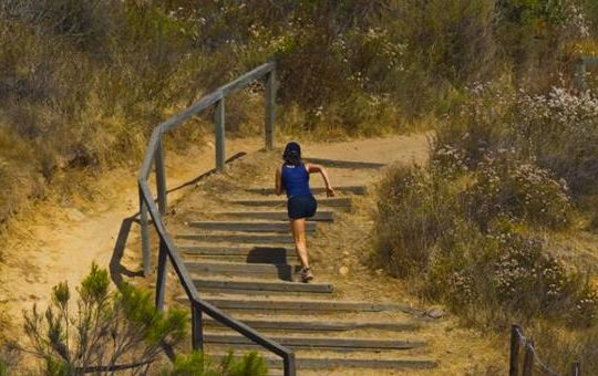 get fit with balboa park s hiking biking trails